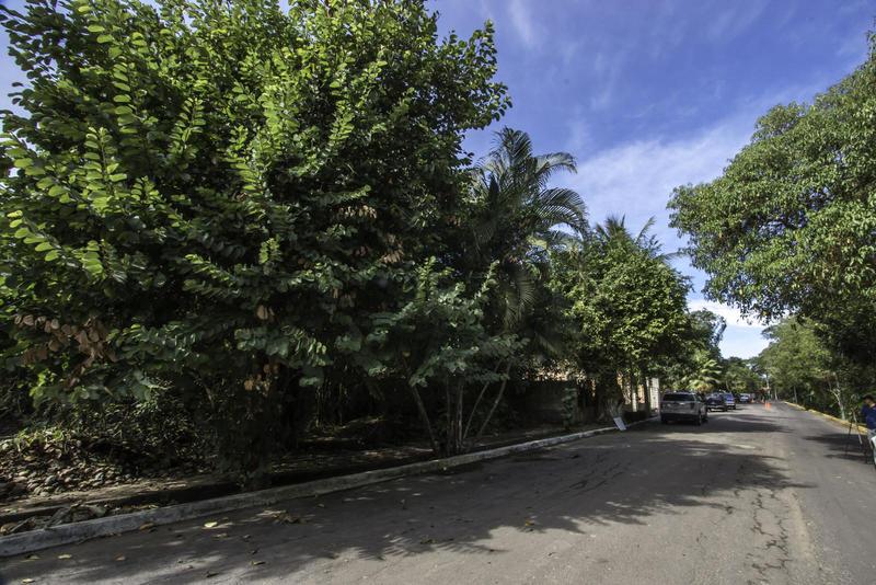15 Paseo De Las Flores, Lote George, Riviera Nayarit, Na