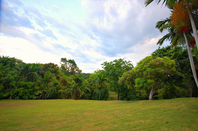 Coconut cottage jamaica30