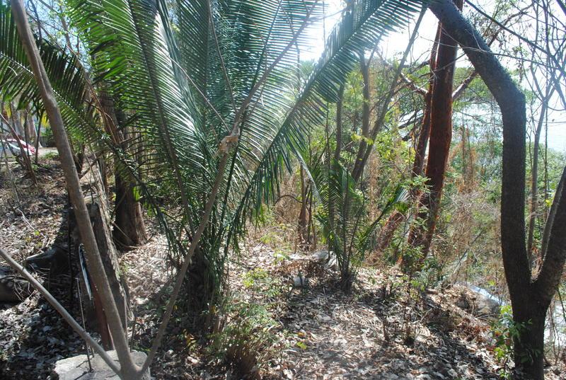 Mz4 Le Kliff Carr, Lote #13 Boca De Tomatlan, Puerto Vallarta, Ja